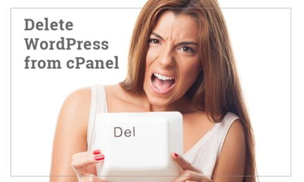 How to Delete WordPress from cPanel?